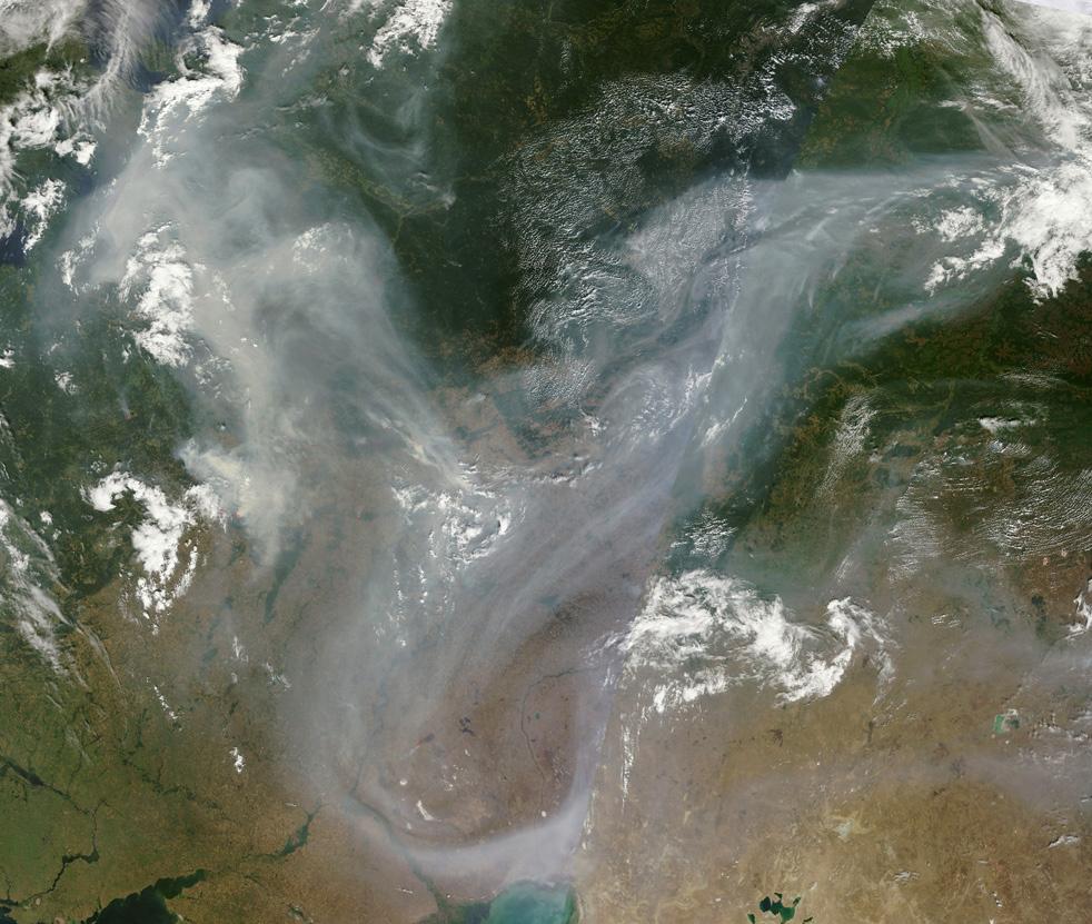 Лесные пожары в России фото снимок фото со спутника