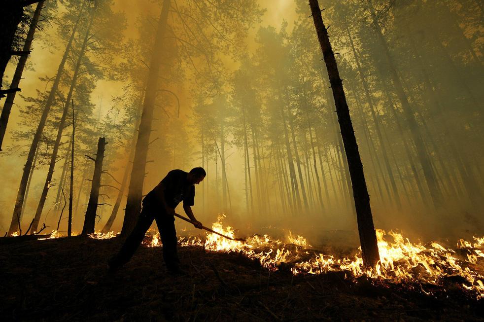 Лесные пожары в России фото