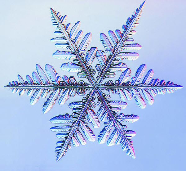 фотография снежинки