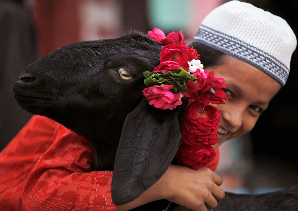 Хадж и мусульманский праздник аль-Адха